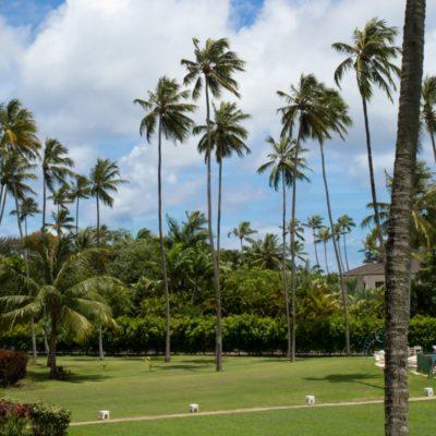 800_5393-beach-hotel-barbados-gallery