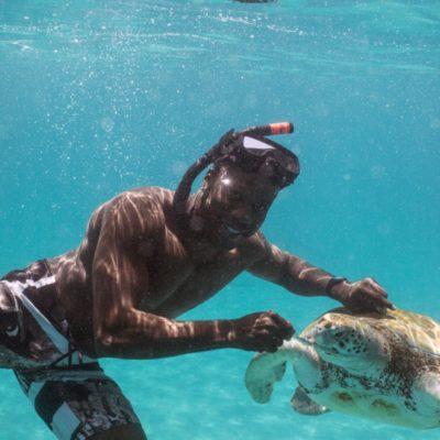 800_8421-swim-with-turtles-barbados